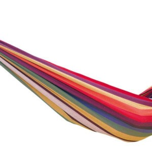 chico-rainbow